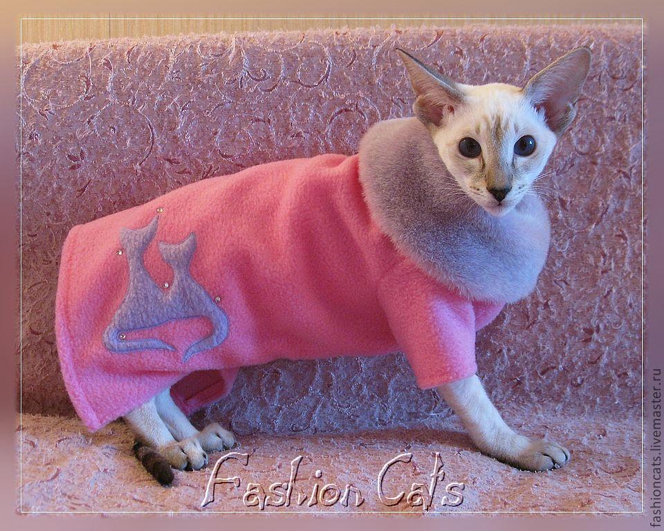 Одежда Для Кошек Спб