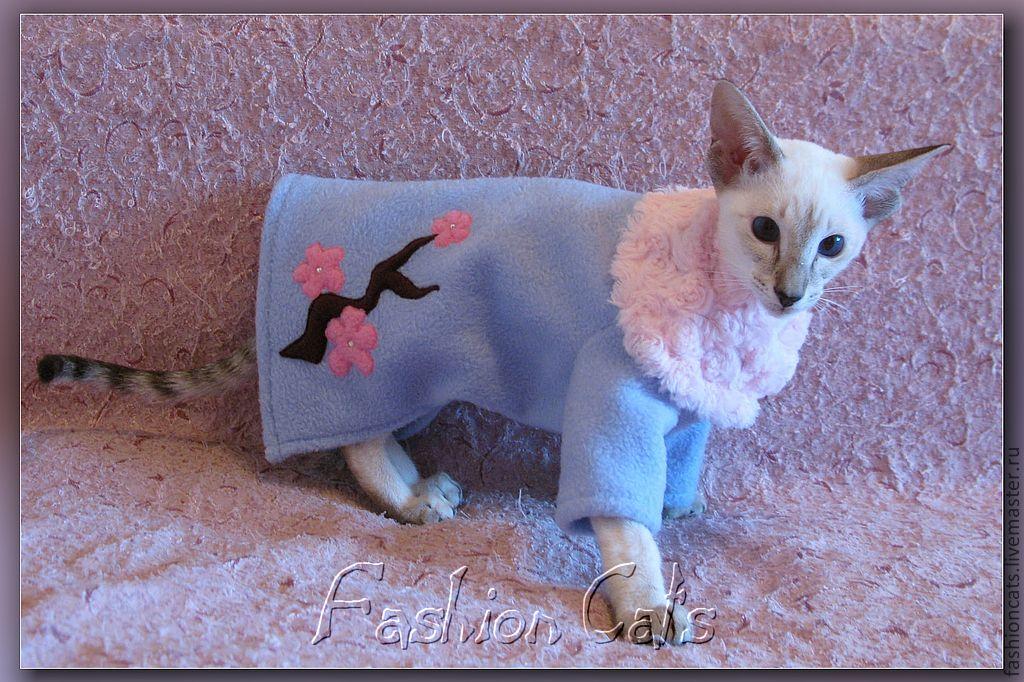 Как сделать для кота из ткани 794