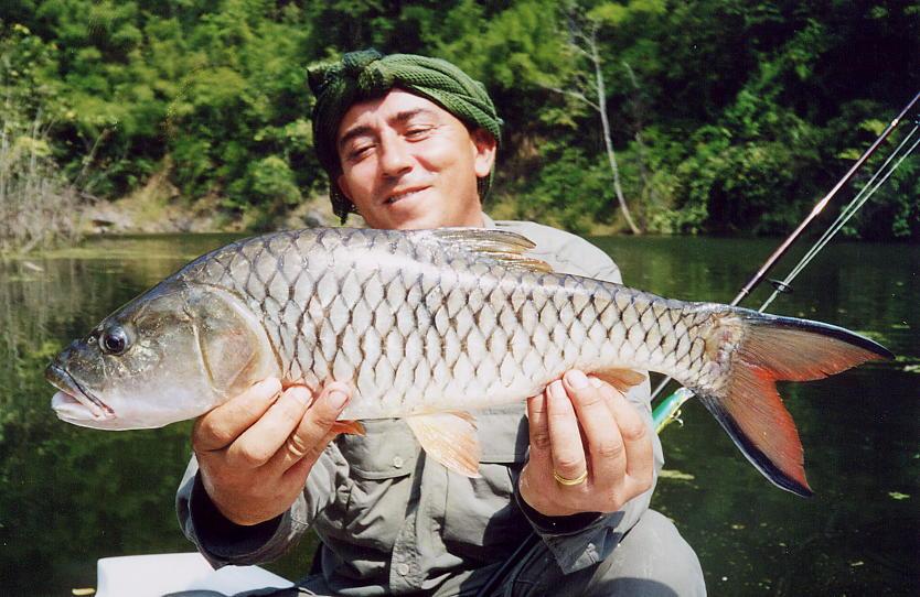 рыболовные паттайи