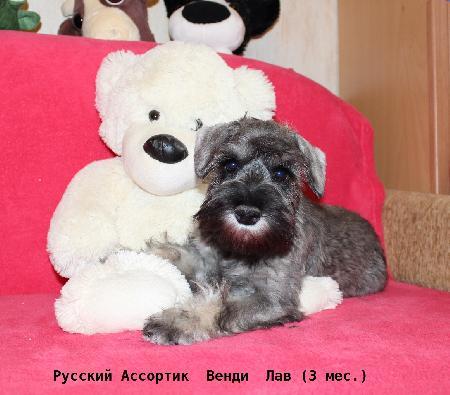 http://ns.sitecity.ru/users/z/zwerg-lyufem/storage/ltext_1806185501.p_1412205325.female14g.jpg