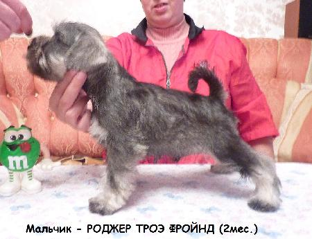 http://ns.sitecity.ru/users/z/zwerg-lyufem/storage/ltext_1806185501.p_3108101648.rodjer.jpg