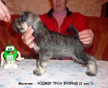 http://ns.sitecity.ru/users/z/zwerg-lyufem/storage/ltext_1806185501.p_3108101648.rodjer1.jpg